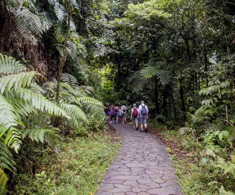 Landausflüge auf Guadeloupe zu den Wasserfällen von Carbet