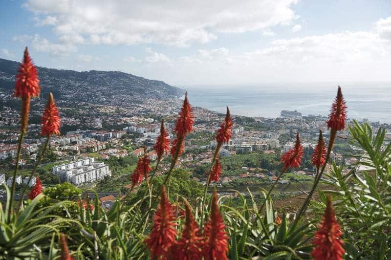 Landausflüge auf Madeira auf eigene Faust
