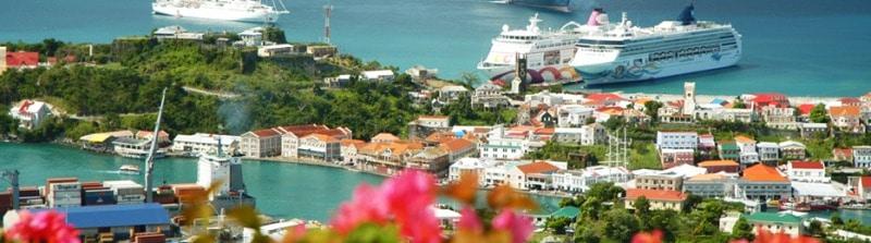 Blick auf Carenage, Fort George und den Hafen