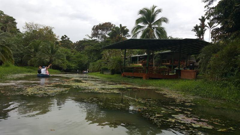 Landausflüge in Puerto Limon zu den Kanälen von Tortuguero