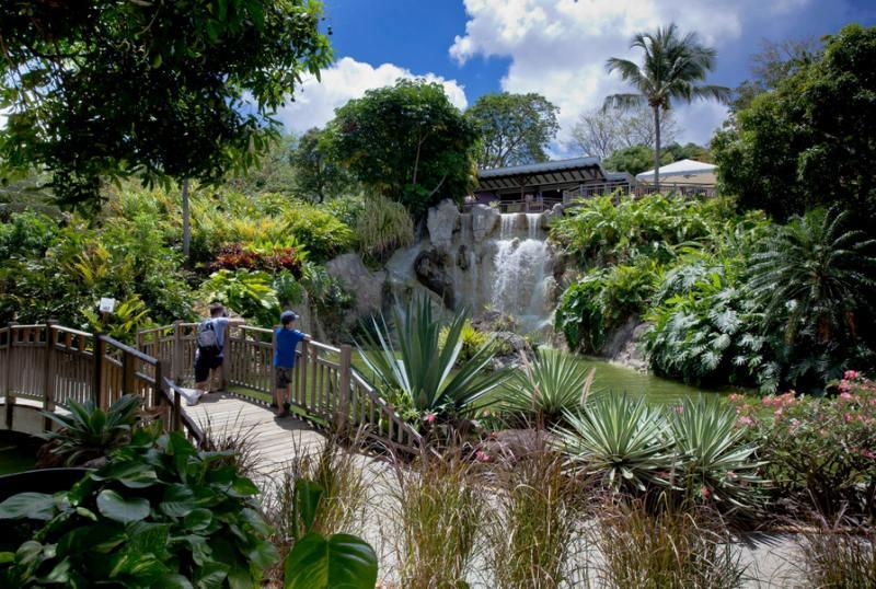 Botanischer Garten von Deshaies