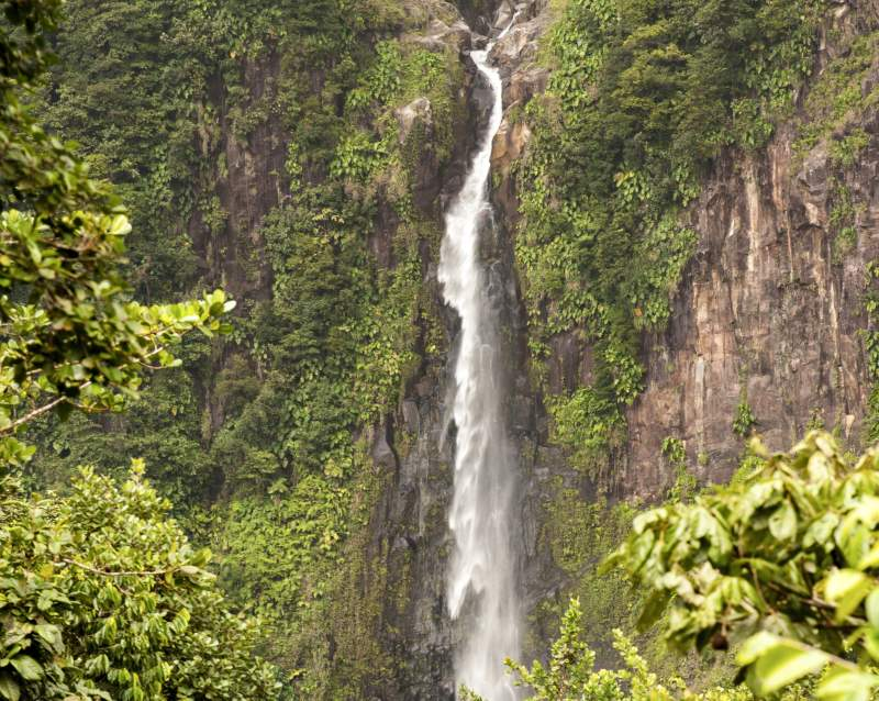 Landausflüge auf Guadeloupe auf eigene Faust