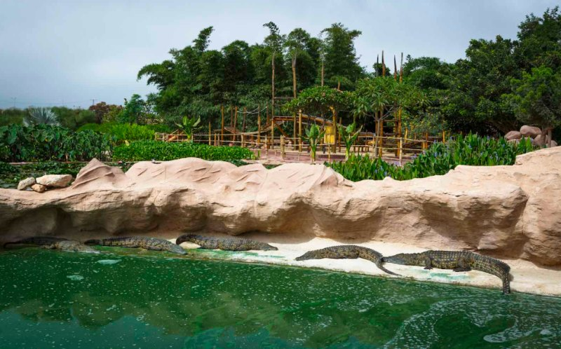 Crocopark in Agadir