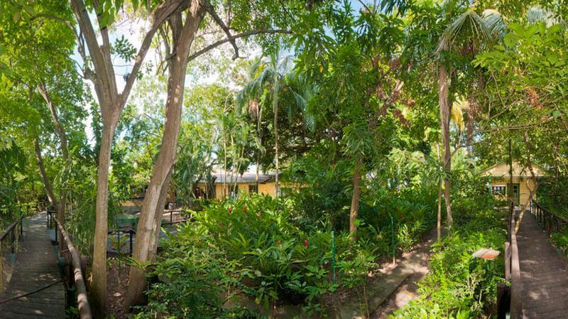 Dieser Garten ist ein Teil des Cruise Terminals von Cartagena de Indias