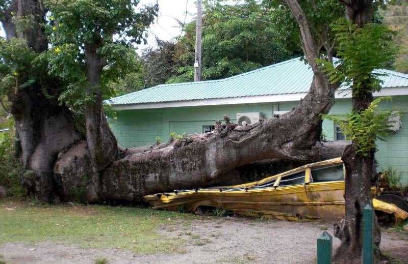 Erinnerung an einen Hurrikan