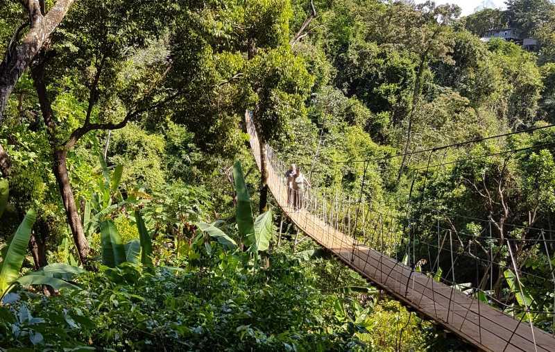Hängebrüce im Maya Eden Eco Park