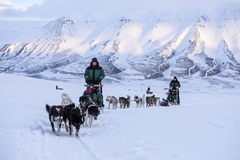 Hundeschlitten auf Spitzbergen
