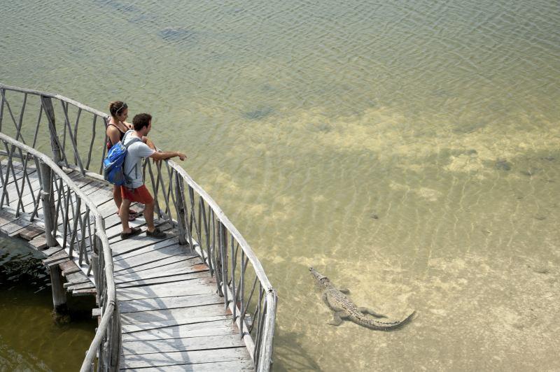 Krokodile im Punta Sur Eco Beach Park