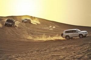 Landausflüge in die Wüste