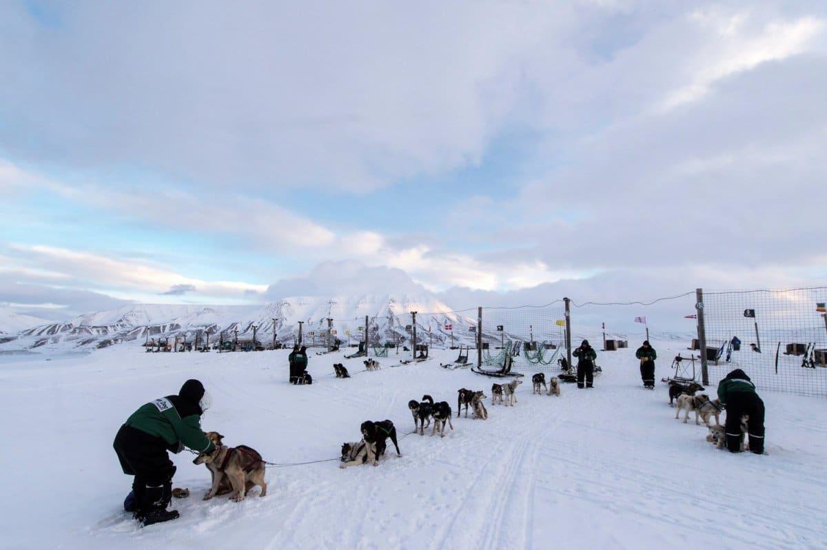 Longyearbyen Landausflüge