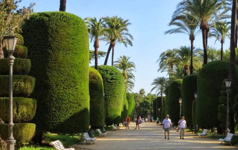 Der Parque Genoves in Cadiz
