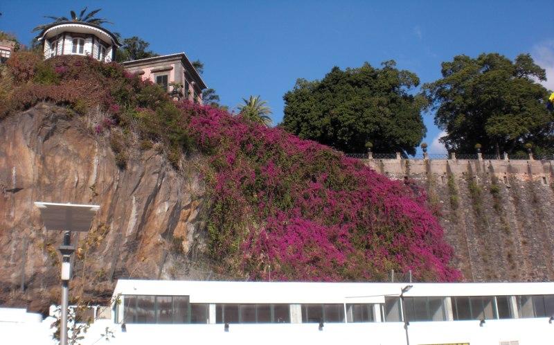 Blick auf den Parque de Santa Catarina