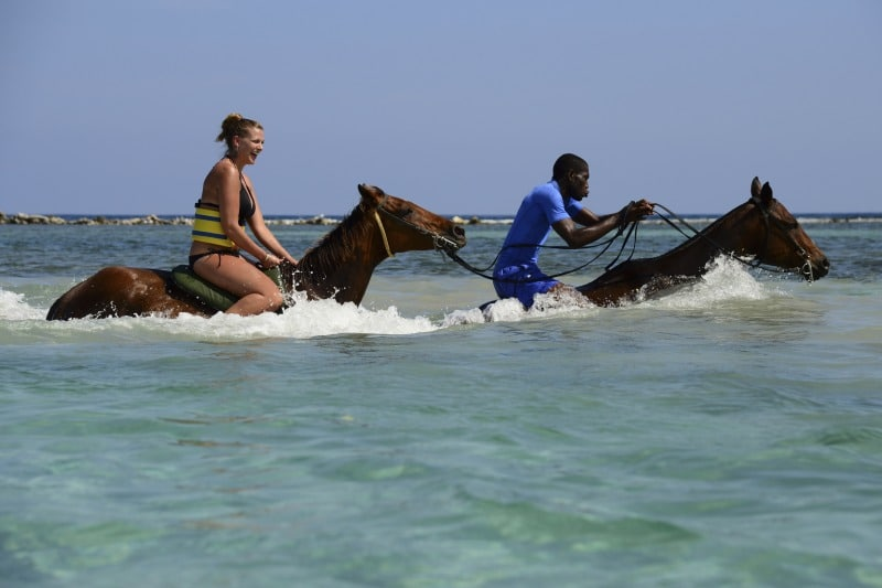 Beliebte Landausflüge in Montego Bay Ausritte mit Pferden am Strand