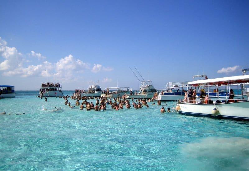 Viele Landausflüge auf Grand Cayman führen nach Stingray City