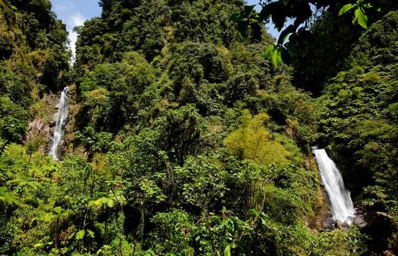 Landausflüge auf Dominica führen oft zu den Trafalgar Falls